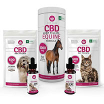 CBD Wholesale Pet Treats